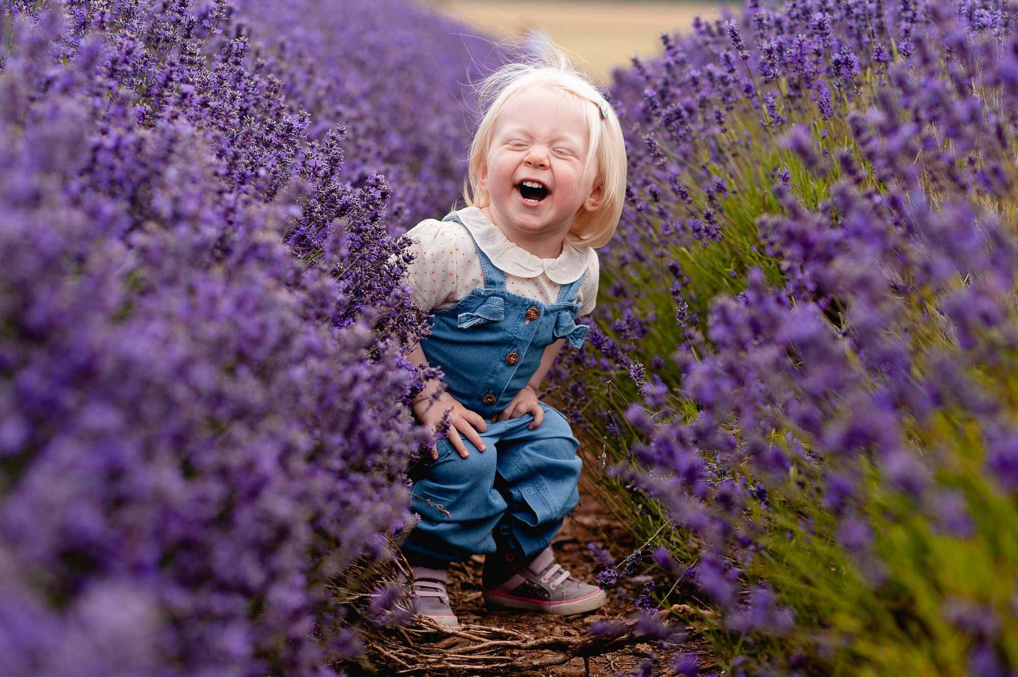 Lavender Mini Session